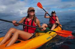 Excursión de kayak y snorkel en el sur de Maui con tortugas