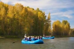 Combo de 21 milhas: Snake River-Scenic e Whitewater Trip