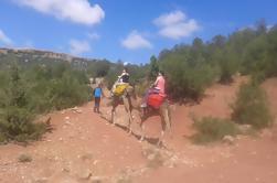 Excursión privada de un día: paseo en camello y caminata en el Atlas