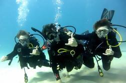 Descubre el buceo desde Waikiki