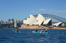 Destaques do porto de Sydney Tour de caiaque
