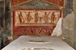 Excursión de medio día a Pompeya