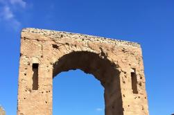 Excursión privada: Excursión de un día Excursión a Herculano Mt Vesubio y Pompeya