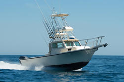 Three Quarter Day Private Fishing Charter from Dana Point