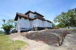 Tour Privado de Día Completo: El Tour del Templo de Kandy