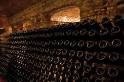 Top Sparkling Tour: Excursión de un día desde Milán para descubrir Franciacorta Wine and Wineries