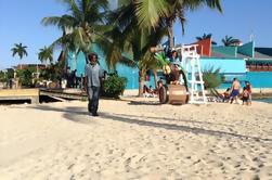 Falmouth Shore Excursion: Lo mejor de Jamaica