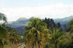 Ocho Rios Shore Excursion: Lo mejor de Jamaica Destacados Tour