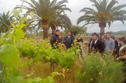 Excursion privée d'une demi-journée au vin privé avec dégustation de vins