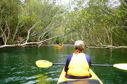 Excursão Kayaking do porto médio de Sydney do Spit