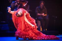 Tournée de tapas et de vins avec une expérience de flamenco