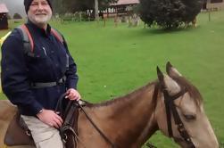 Tour privado de cabalgata en Bogotá