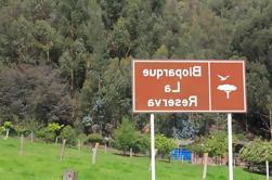 Tour Privado de Reserva de BioParques desde Bogotá
