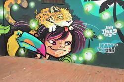 Tour privado de Graffiti en Bogotá