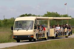 Tour de Tranvía Guiada por el Everglades del Valle del Tiburón