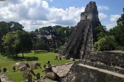 Excursión de un día a Tikal con almuerzo en avión