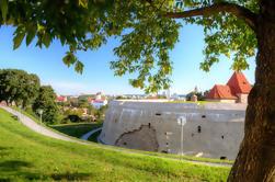 Tour privado: Recorrido panorámico de Vilnius por la República de Uzupis