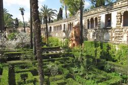 Private 1,5-timers tur til Alcazar i Sevilla