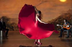 Show de flamenco en las cuevas de Sacromonte en Granada