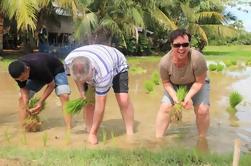 Day in a Life Una experiencia auténtica en Siem Reap
