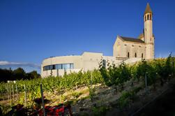 Tour de bicicleta eléctrico y degustación de vinos desde Niza