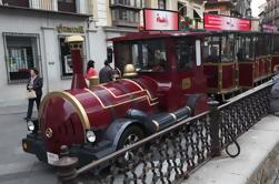 Visita turística de Toledo con tren turístico desde Madrid