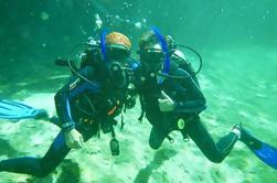 Descubre Scuba en Cenote y Ocean Dive