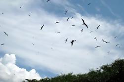 Viaje de 10 días en la Amazonía ecuatoriana
