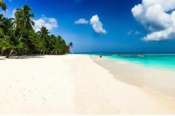 Excursión de un día Saona Island desde Punta Cana