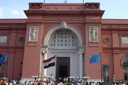 Excursión guiada de medio día al Museo Egipcio