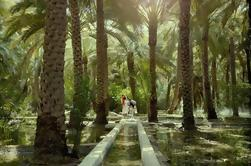 Make Your Own Al Ain City Tour - Private Tour from Abu Dhabi