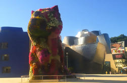 Visita guiada privada del Museo Guggenheim
