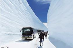 Ruta alpina Tateyama Kurobe de 2 días, Shirakawago y Hida Takayama Tour en tren expreso desde Tokio