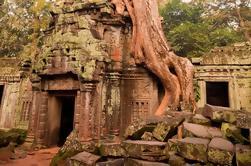Angkor: Wo die Natur die Geschichte trifft