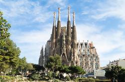 Tour guiado de día completo y saltar la línea: Sagrada Familia, Parque Güell y La Pedrera