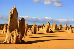 Excursión de un día a los Pinnacles y al Parque Nacional Yanchep desde Perth Incluyendo Langster Shack Lunch y Sandboarding