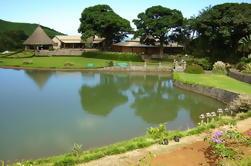 Tour de Aventura de Vida Silvestre 4x4 en Mauricio