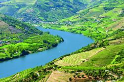 Vale do Douro Inclui almoço e degustação de vinhos Excursão de um dia em grupo pequeno com cruzeiro opcional no rio