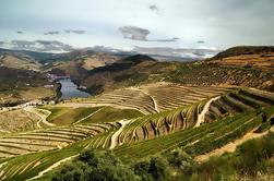 Private Tour: Douro Vinhateiro do Porto com Degustação de Vinhos