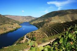 Douro Vinhateiro Tour en grupo pequeño con cata de vinos de Oporto