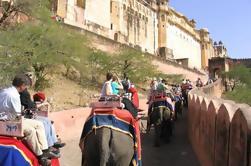 Tour privado de la ciudad de Jaipur con una visita al Fuerte Amber y el Palacio de la Ciudad