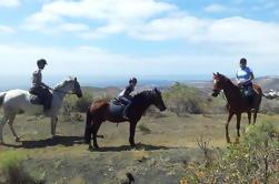 Excursión a caballo volcánico en Gran Canaria