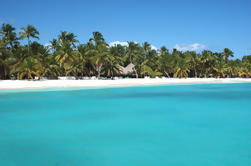 Saona Island Day Trip De Punta Cana