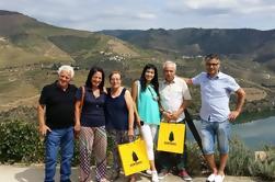 Vale do Douro e Vinho