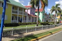 Excursão de um dia para a Samana Discovery de Punta Cana