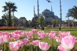 Excursión a pie de Estambul de 3 horas