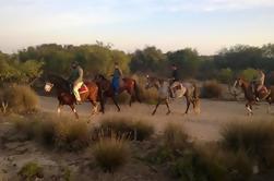 3 heures d'équitation avec dîner et nuit à Essaouira
