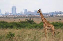 Parque Nacional de Nairobi, Orfanato de elefantes David Sheldrick, Giraffe Centre y Karen Blixen Museum Tour en Nairobi