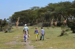 Excursión de un día al lago Naivasha caminando con animales desde Nairobi