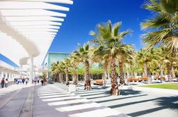 Visite privée de Malaga